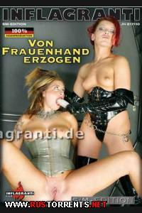 Постер:Воспитание женской рукой
