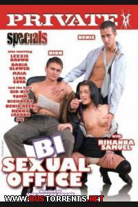 Постер:Бисексуальный Офис