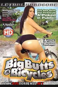 Постер:Большие задницы на велосипедах