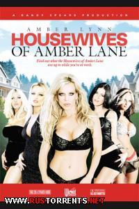 Постер:Домохозяйки Амбер Лэйн