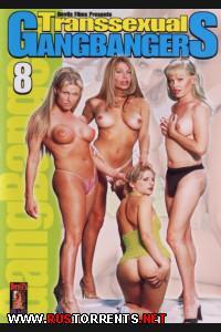Постер:Транссексуальная групповуха 8