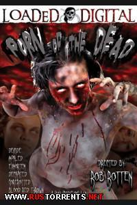 Постер:Порно Мертвецов