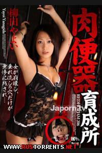 Постер:Раскалённый трафик 206
