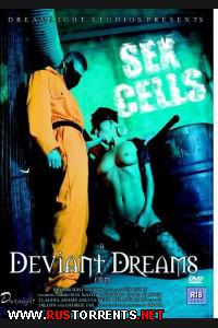 Постер:Сексуальные Тюремные Камеры
