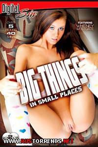 Постер:Большие Штуки в Маленьких Местечках