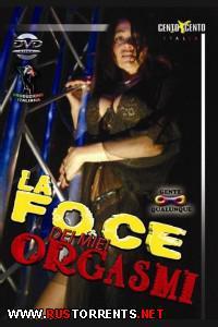 Постер:La Foce dei Miei Orgasmi (Cento X Cento)
