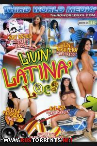 Постер:Сумасшедшие латинки