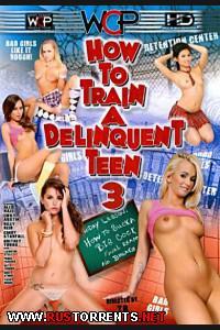Как Обучать Провинившегося Подростка 3 | How To Train A Delinquent Teen 3