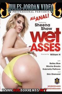 Мокрые задницы  | Wet Asses