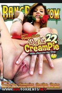 Кончить в сисястую 22 / Big Tit Cream Pie 22 (2013) DVDRip |