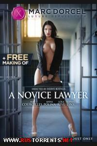 ������� ������� | A novice Lawyer