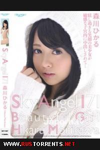 Небесный Ангел #171 | Sky Angel #1711