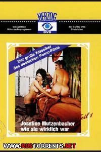 Постер:Сенсационная жанин