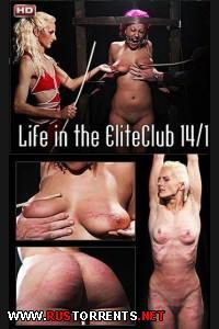 ����� � ������� ����� - ����, �����, ����� | [ElitePain.com] Life in the EliteClub 14, part 1