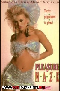 �������� ������������ | Pleasure Maze