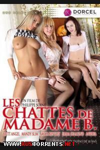 Киски Мадам B. | Les chattes de Madame B.