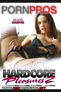 Жесткое Удовольствие 2   Hardcore Pleasures 2