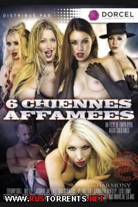 6 Голодных Сучек | 6 Chiennes Affamees