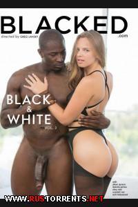 Чёрное И Белое 2 | Black & White 2