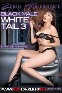 Черные Концы В Белых Крошках 3 | Black Male White Tail 3