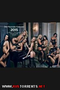 Playboy. Playmate Calendar 2015 Germany  |