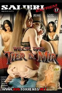 ������� �� ��� �������� 17 | Weck Das Tier in Mir 17  Bianca, Nikita, Pavel, Candy, Caty, Denis