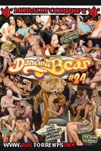 Танцующий Медведь 24 | Dancing Bear 24