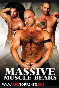 Мускулистые Медвежатки | Massive Muscle Bears