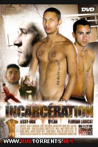 Постер: Лишение Свободы