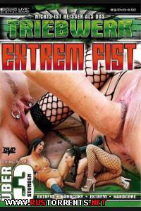 Постер:Экстримальный Кулак