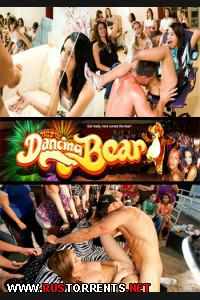 Постер:DancingBear.com / Crazy Ass Male Review