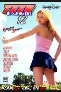 Постер:Teen Hitchhikers 12